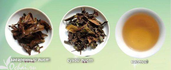Белый чай Шоу Мэй в магазине Очай